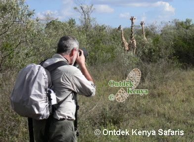 Photo tour in Kenya