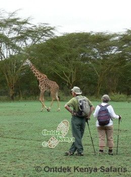 Senior Citizen Tours in Kenya, Africa