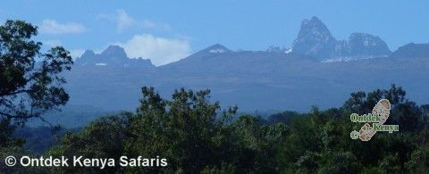 Mount Kenya climbing, starting from the Sirimon Route.