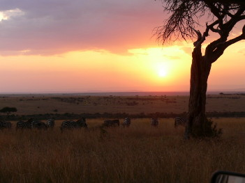 Photo safaris in Kenya: sunset in Masai Mara