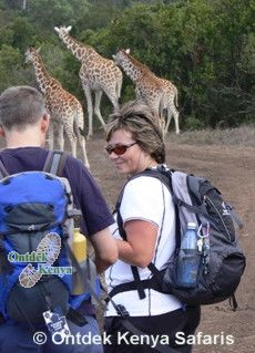 Adventure Tour walking, Kenya Aberdare Game Sanctuary