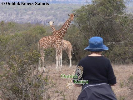africa travel agents tour in kenya