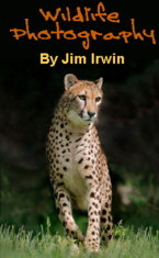 Jim Irwin wildlife photography
