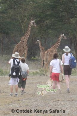 Student Educational Travel Kenya Africa