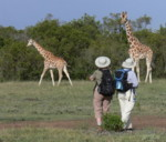 Seniors Walking Tours and safaris , Kenya, Africa