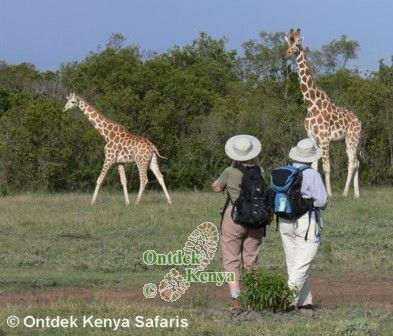 Travel for Seniors. Seniors walking adventures, Kenya ,Africa.