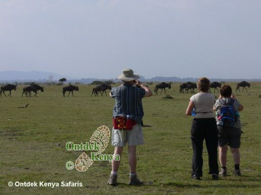 Hiking adventure vacations Kenya Crescent Island wildebeests