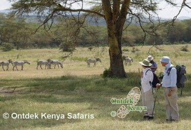 Ecotourism in Kenya - hiking in the Crater Lake game sanctuary.