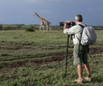 Kenya photo safaris and wildlife photography tours