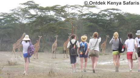 Higher educational school travel, Kenya, Africa.